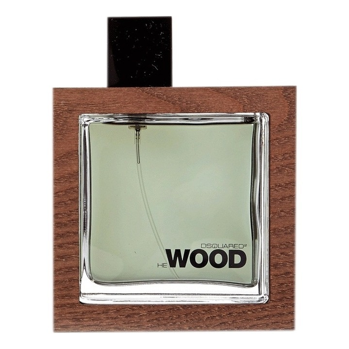 He Wood Rocky Mountain от DSQUARED2 - 2